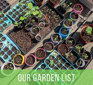 Our Garden List: What We're Growing