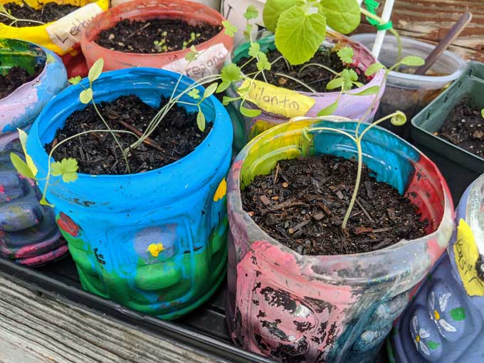 Earth Day Crafts Preschool - Fun Flower Pot Craft with Plastic Bottle Recycled from Gatorade Bottle