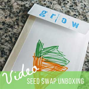 Seed Swap Unboxing: Winter Therapy for Gardeners