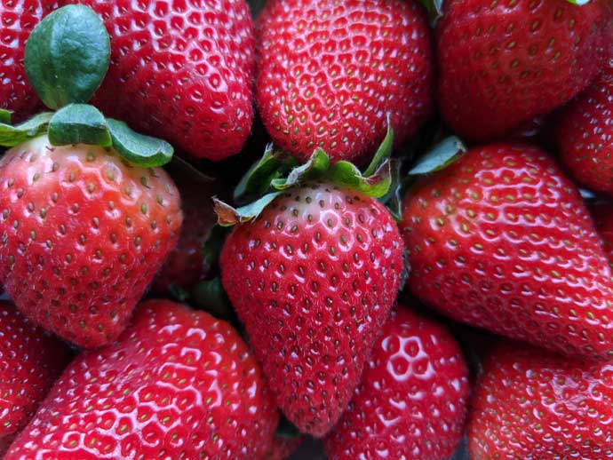 Growing Strawberries from Strawberries - Big Delicious Juicy Red Strawberries Background