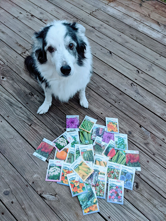 Moko the Garden Dog is the Guardian of the Seeds in their Original Packets