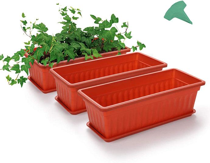 Rectangular Planters for Lettuce Seeds - Three Orange terra cotta colored planters