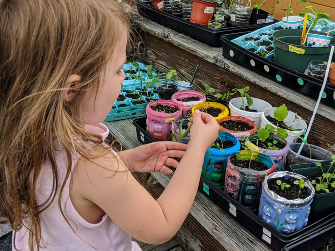 Little Girl Helping Mommy Harden Off Seedlings on the Deck Outside