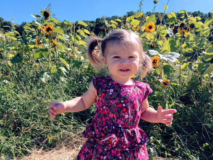 Toddler in a Cut-Your-Own-Sunflower Field
