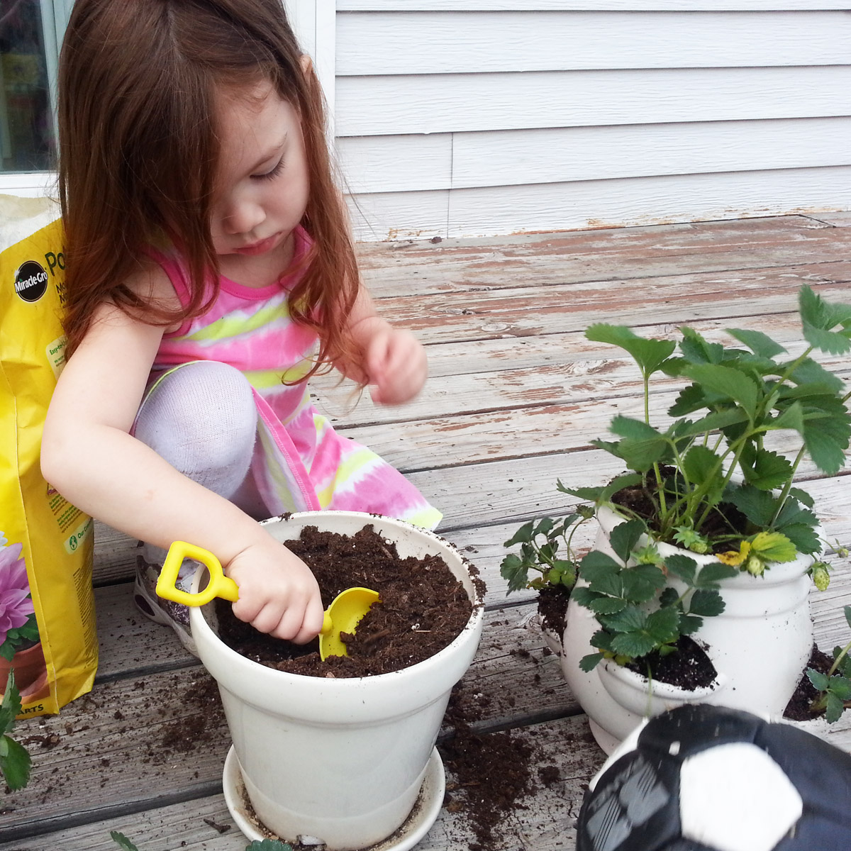 16 Epic Benefits of Backyard Gardening as a Hobby