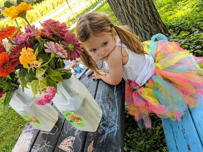 Little Girl in a Tutu with Fresh Picked Zinnias at a Picnic Table
