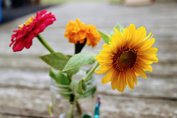 Fresh-cut flowers including Dwarf Sunflowers in a glass jar vase on a wooden deck