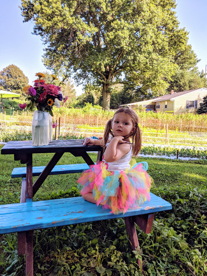 Little Girl in a Tutu at a Picnic Table with a Bouquet of Pick-Your-Own Zinnias Flowers
