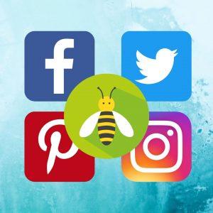 8 Great Gardening Social Media Sites