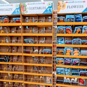 Dollar Tree Gardening 2021: Awesome Finds for Your Garden
