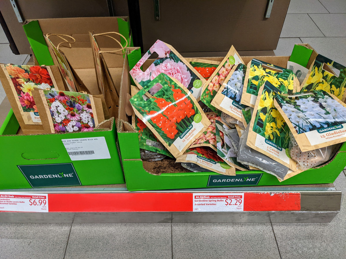 Aldi Garden Line Perennial Flower Bulbs for sale in Cardboard Boxes