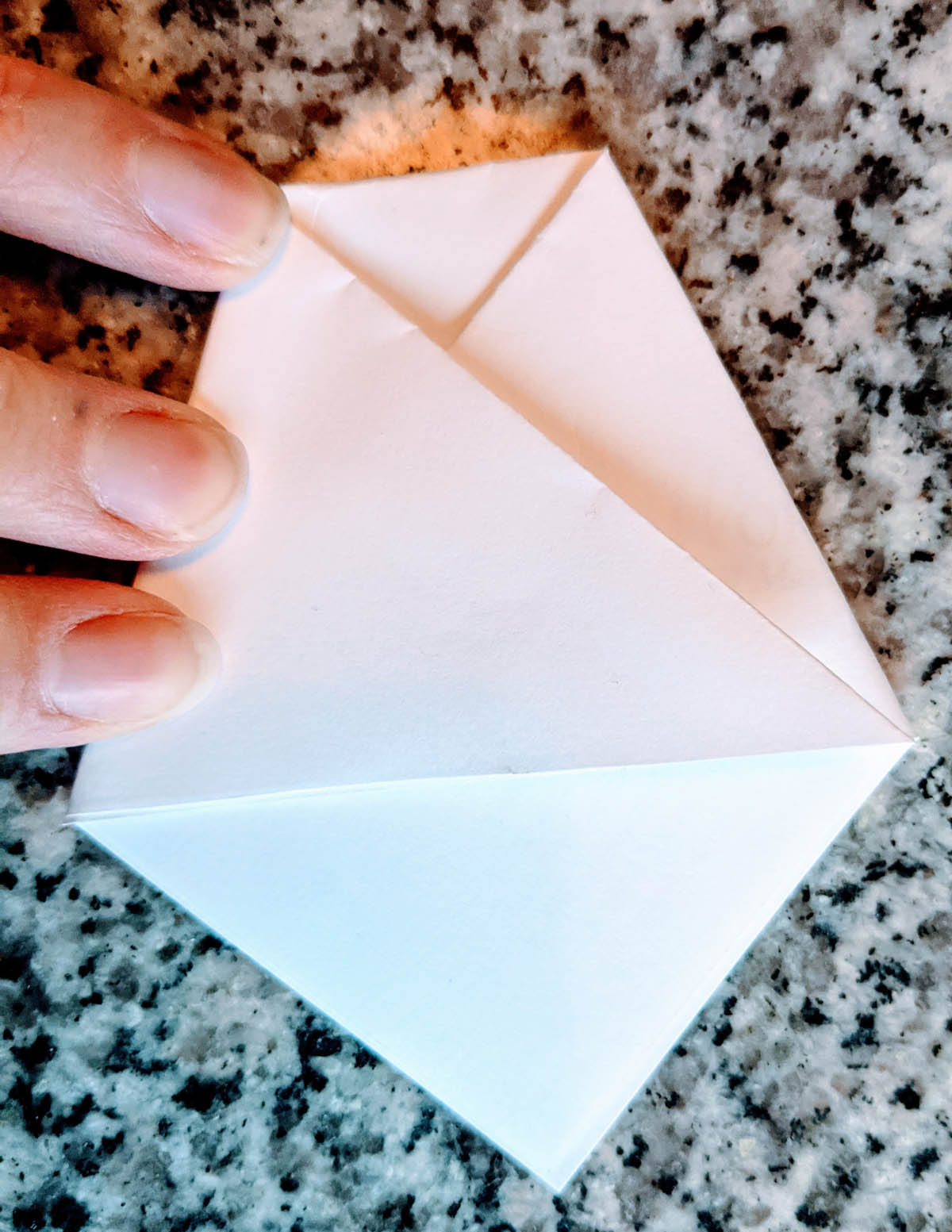 Folding an origami cup / seed envelope