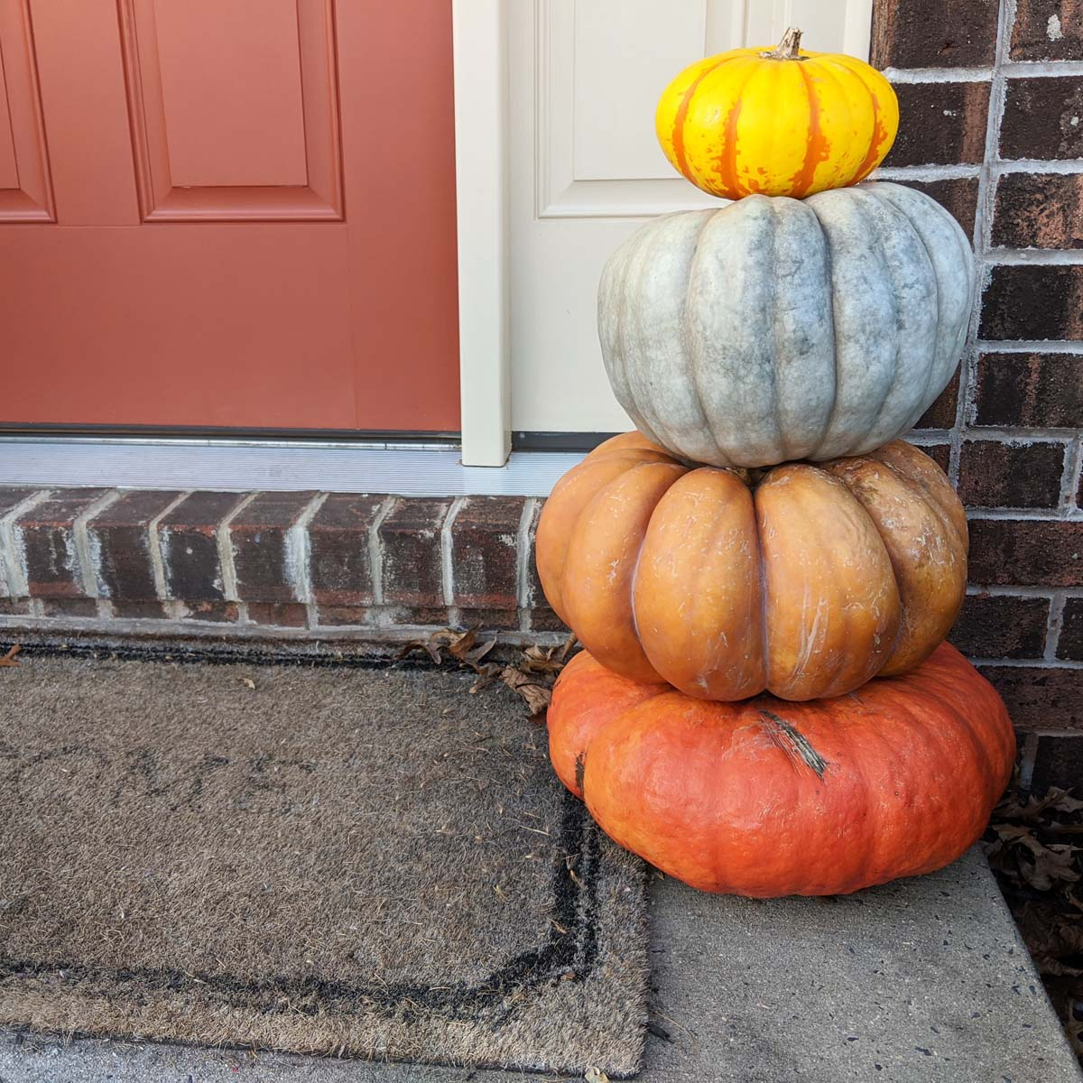 15 Decorative Pumpkins for Your Fall Doorstep