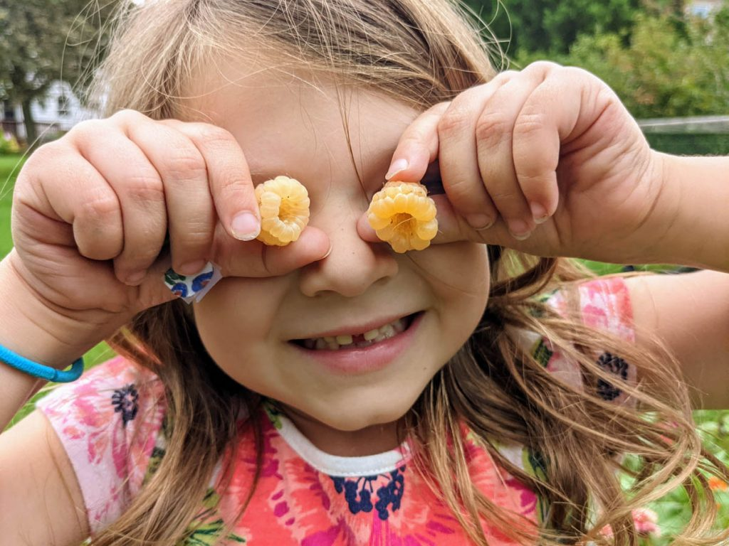 Fresh Picked Raspberries - Little girl with raspberries over her eyes, smiling