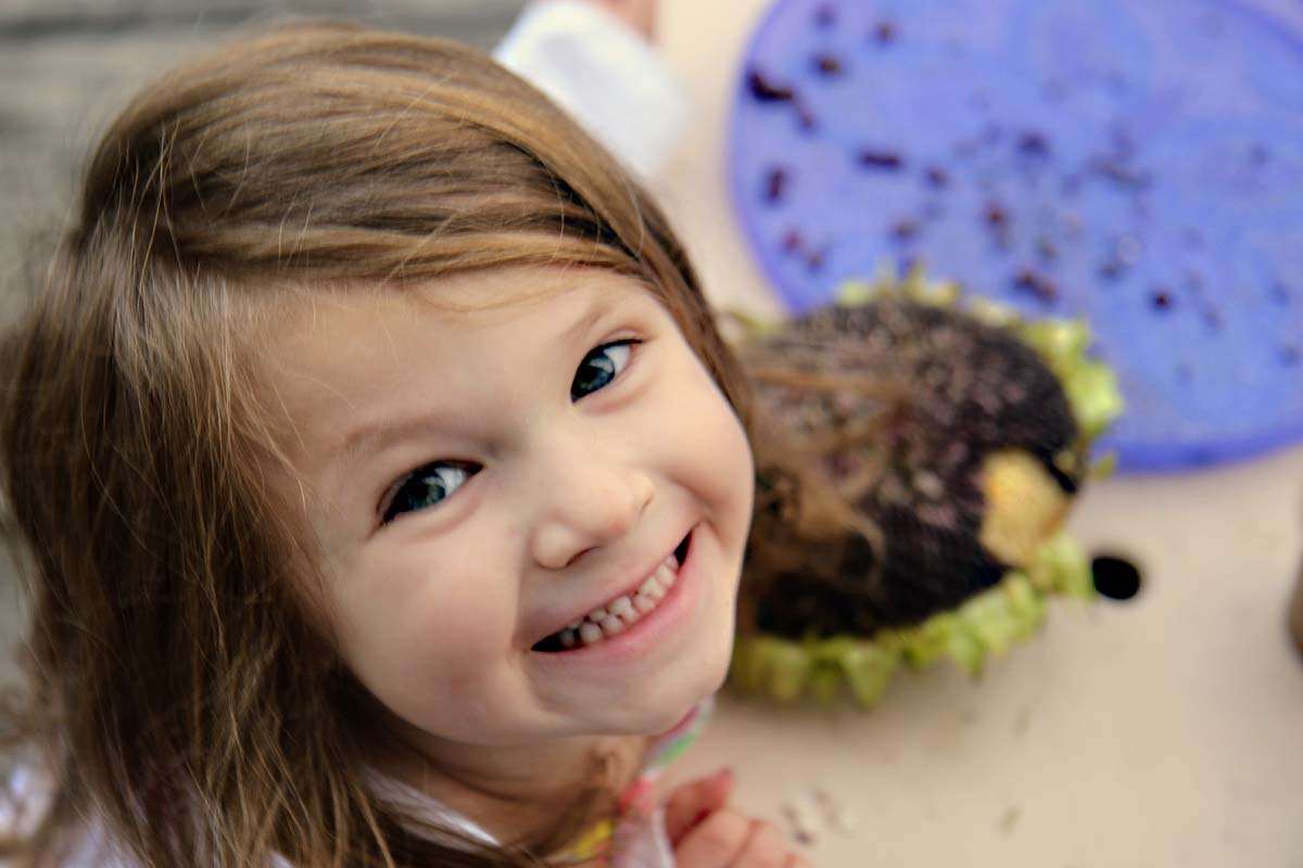 Little Girl Saving Sunflower Seeds