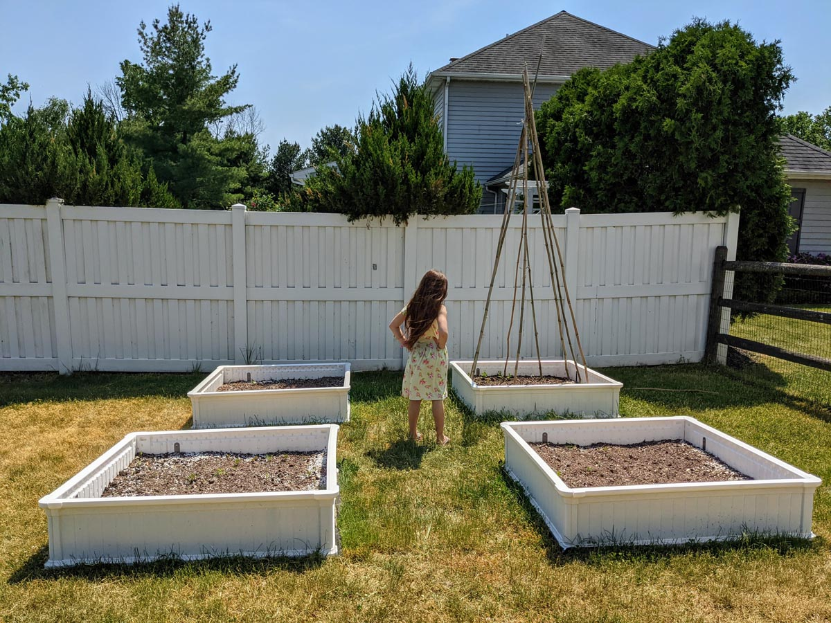 Daughter standing amid white raised garden boxes and bamboo teepee trellis
