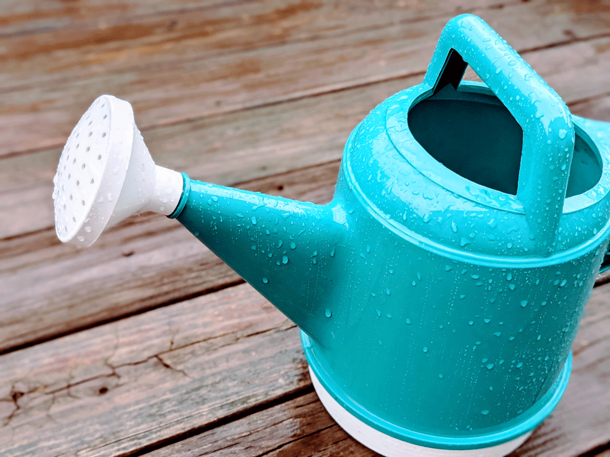 Teal Watering Can Covered in Rain - Rainy Day Gardening Activities
