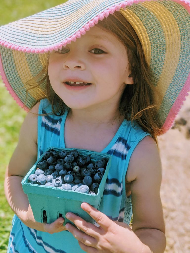 Youngest Daughter Picking Blueberries at a Farm