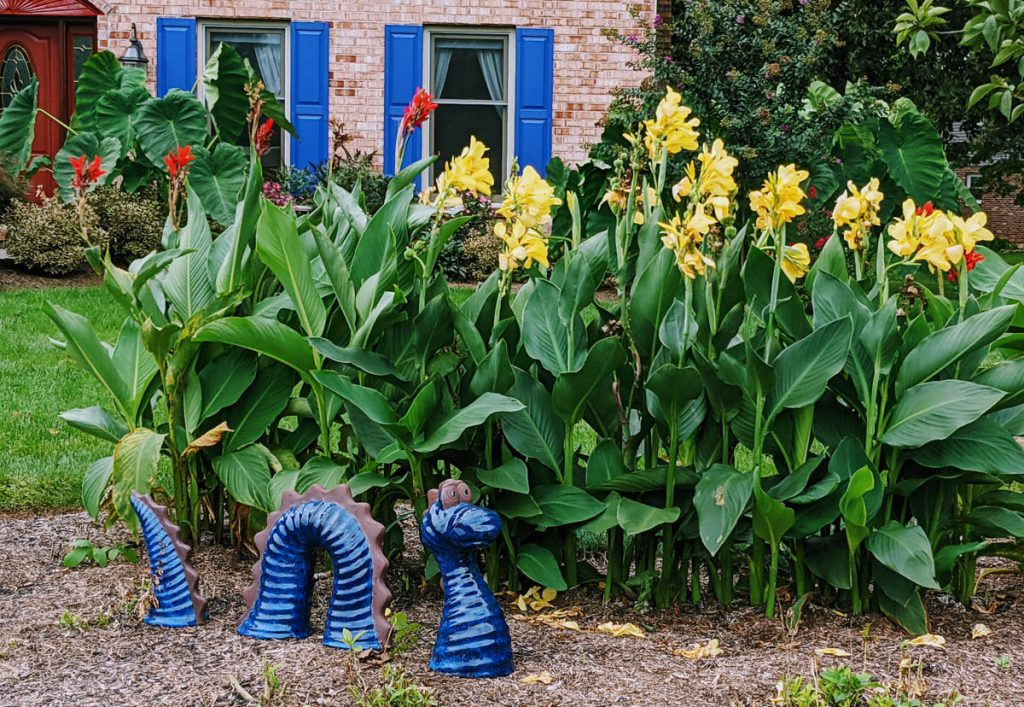 Giant Yellow Cannas with a Sea Serpent Garden Decoration