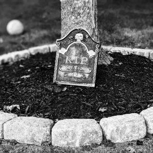 8 Haunted Garden Ideas | Spooky Outdoor Décor